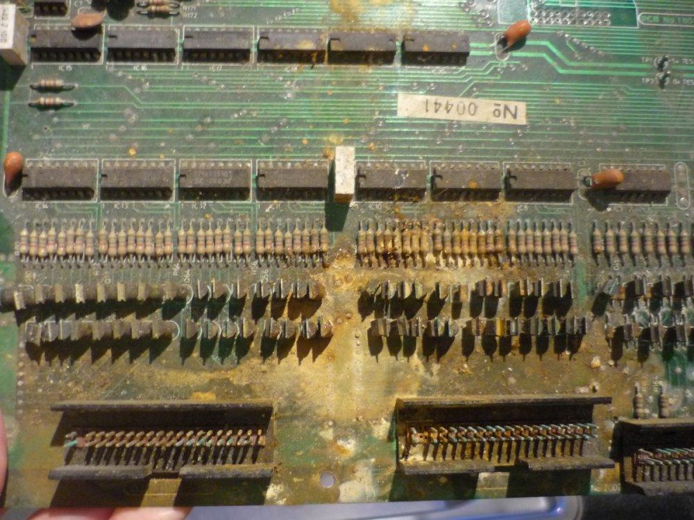 P1030960.thumb.JPG.582d5ce546e1e20dc8a23b4ac467ad19.JPG