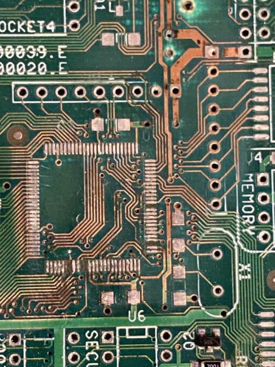 B17F330F-97DA-43D6-88C1-EE4549E7F12A.thumb.jpeg.29a9cf4ca28adbf66884bc1607616738.jpeg